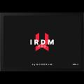 GOODRAM IRDM Pro Gen.2 512 GB