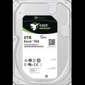 Seagate Exos 7E8 6000 GB