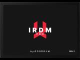 GOODRAM IRDM Pro Gen.2 1024 GB